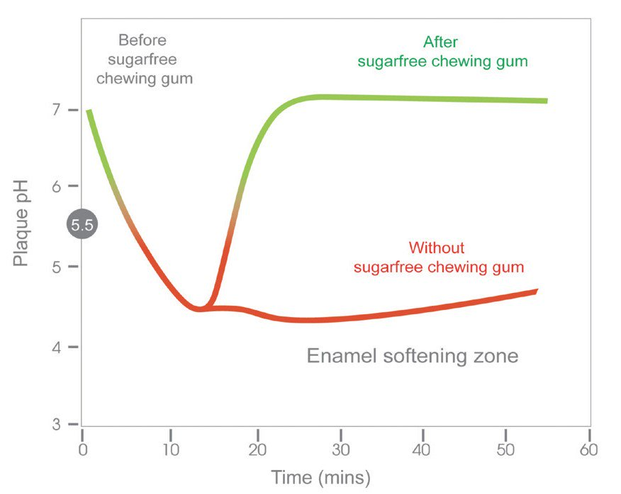 , How sugar-free chewing gum will help you?